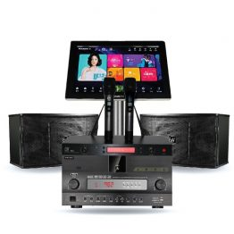 Karaoke System & Home Theater